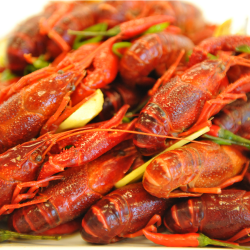 "Crawfish ""Boil"" Food Styling for Advertising Campaign"