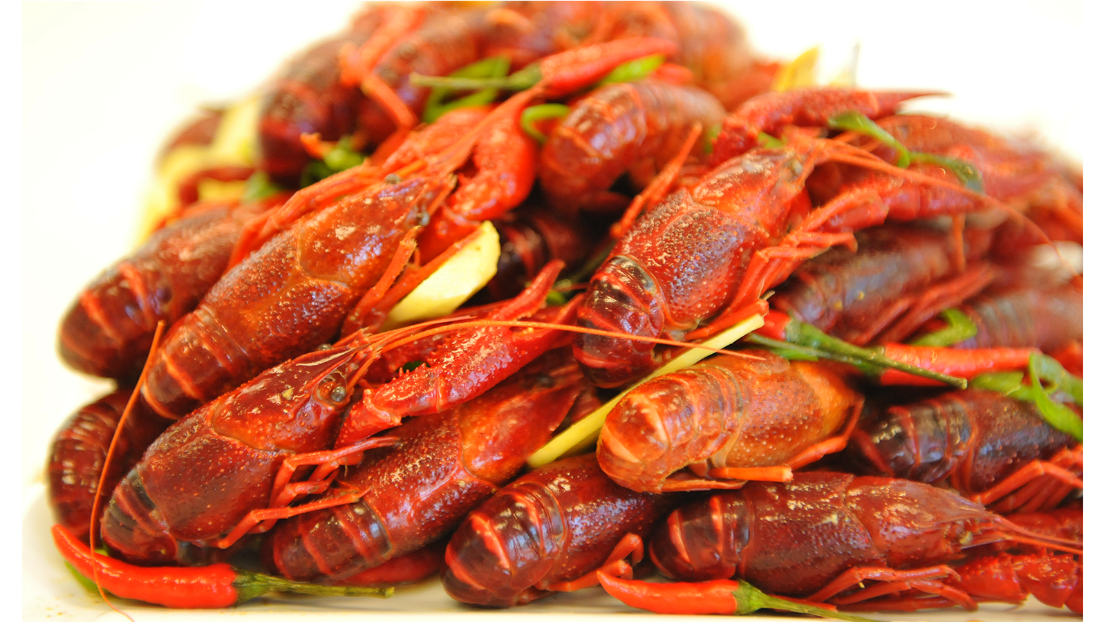 """Crawfish """"Boil"""" Food Styling for Advertising Campaign"""