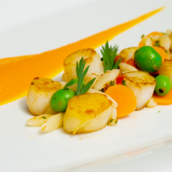 Bay Scallops - Food Photography - Recipe Development